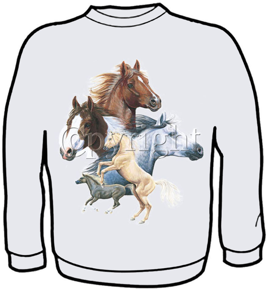 5 Horses Sweatshirt Kids