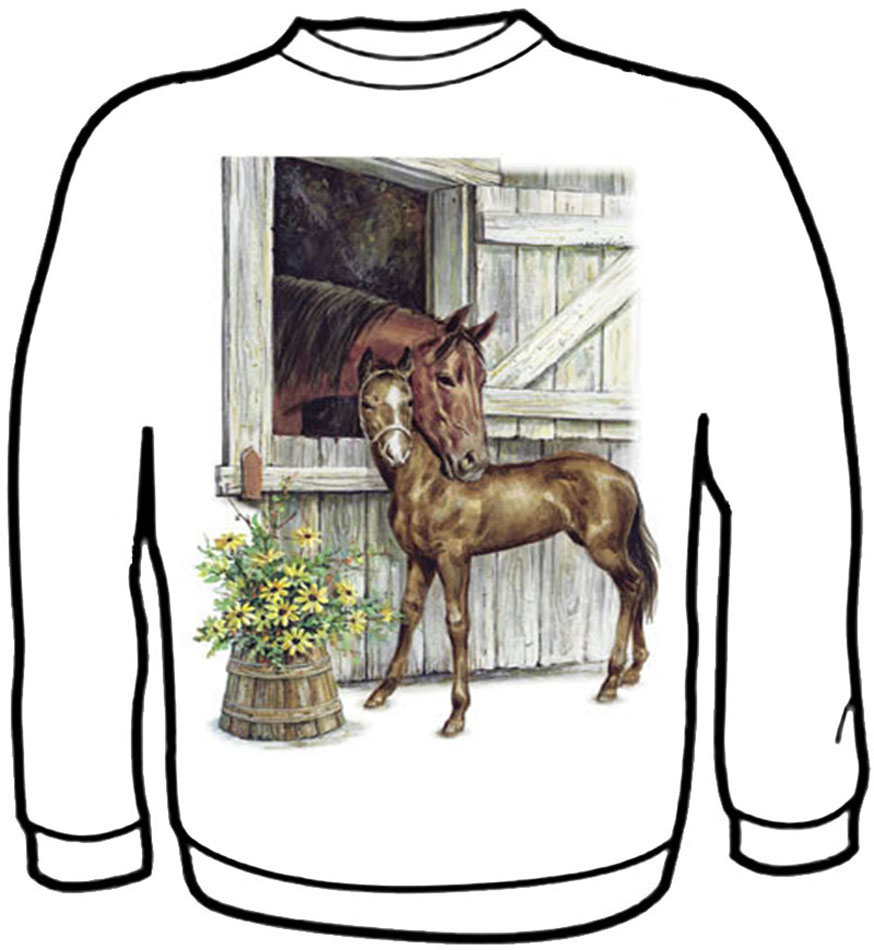 Mare & Foal Barn   Sweatshirt Kids