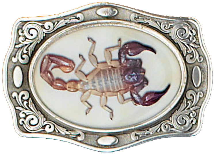 Scorpion Belt Buckle 3-3/4 x 2-3/4