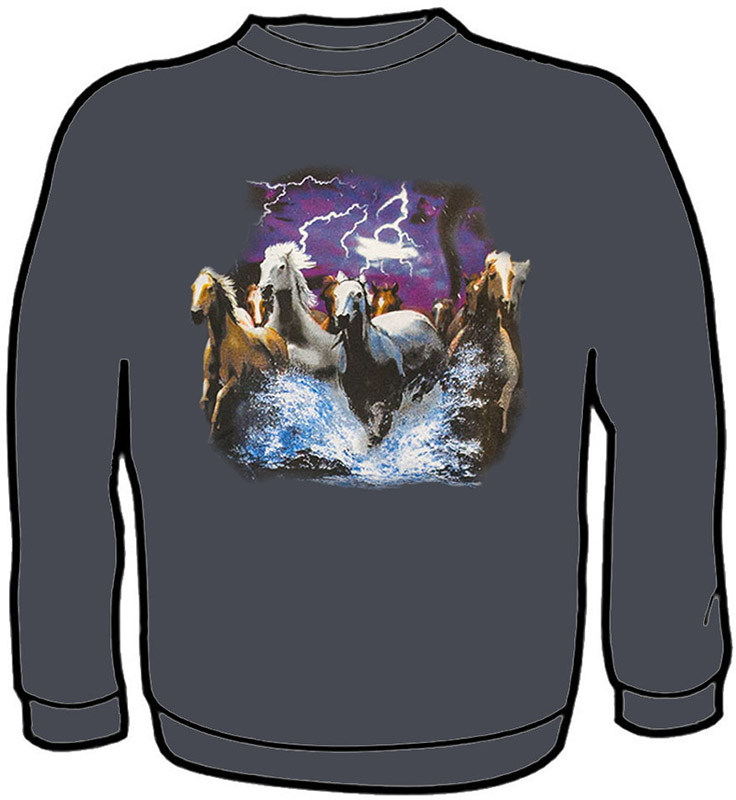 Travelers of the Storm Sweatshirt